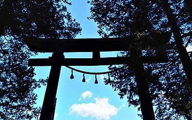 神道を知る